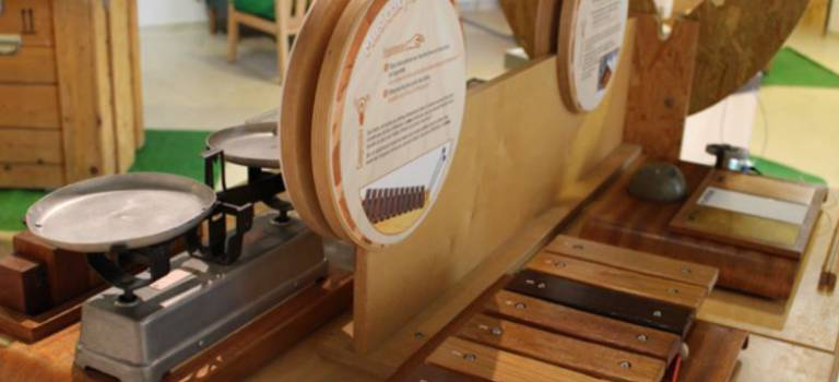 Pour percer à jour les secrets du bois, expo sensorielle et pédagogique à Vitry-sur-Seine