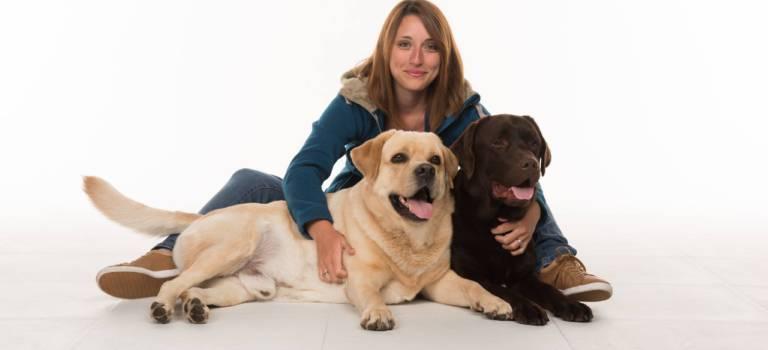 A Chennevières-sur-Marne, Happiness dog bichonne le moral des salariés avec des labradors