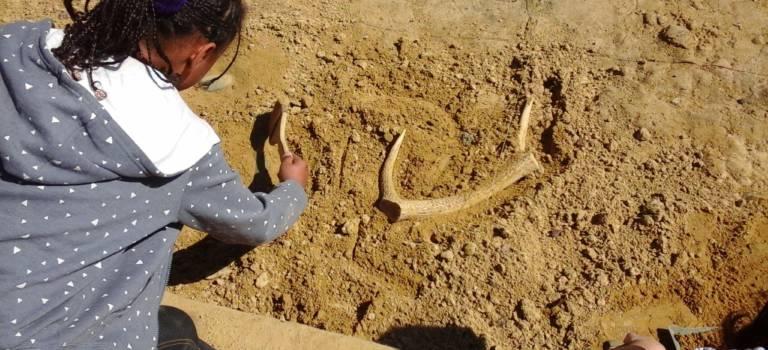 Dans la peau d'un archéologue au parc des Hautes bruyères de Villejuif