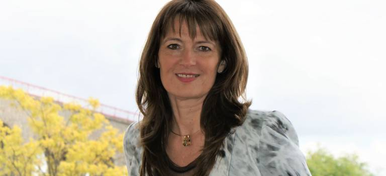 Législatives en Val-de-Marne : dernière ligne droite pour les investitures PS