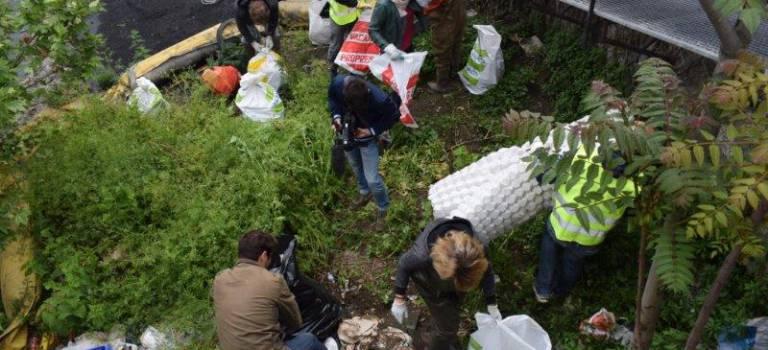 Près d'une tonne de déchets collectés sur le quai Pourchausse à Ivry-sur-Seine
