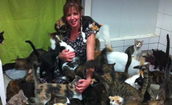 Les chats de Bonneuil atttendent d'être fixés sur leur sort