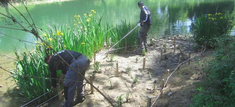 Au fil de l'eau bichonne les îles protégées des boucles de la Marne