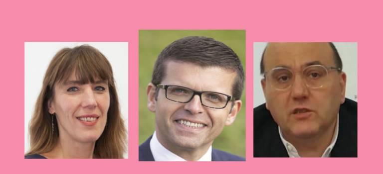 Trois élus du Val-de-Marne à la direction collégiale du PS
