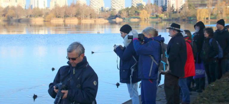 Visite découverte des richesses du lac Créteil en hiver