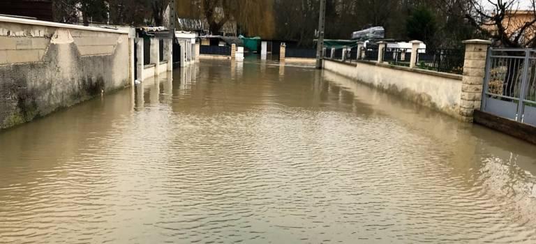 Visite ministérielle à Villeneuve-Saint-Georges pour la renaturation des bords d'Yerres