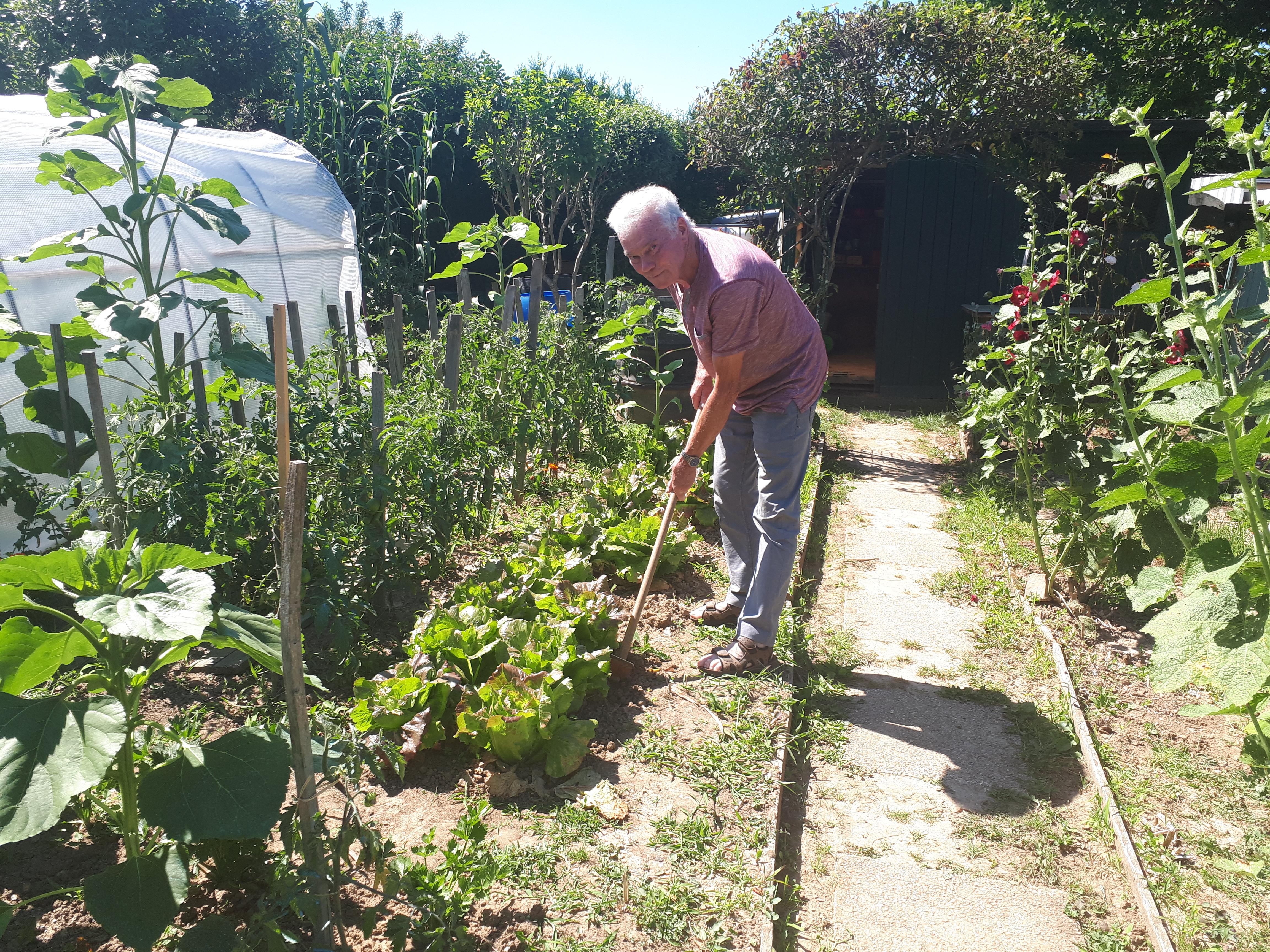 Jardin Ouvrier Le Havre guerre ouverte dans les jardins familiaux de thiais   94
