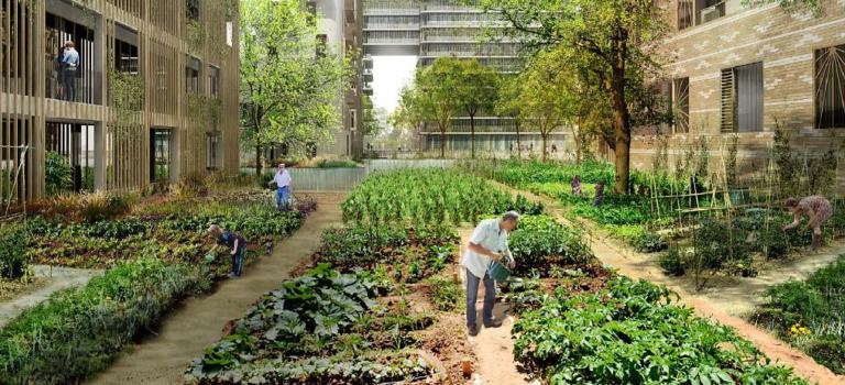 Le Val-de-Marne vote 20 actions concrètes pour développer l'agriculture, le bio et les circuits courts