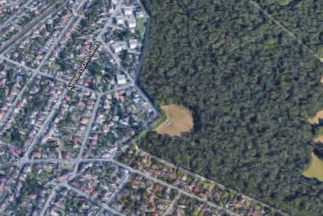 Le Bois de Saint-Martin, futur maillon de la ceinture verte régionale