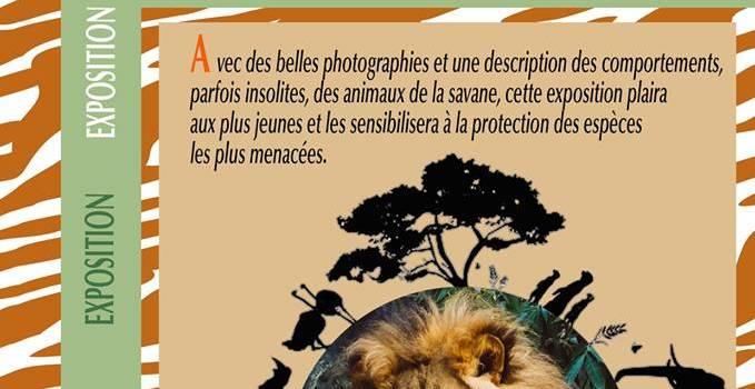 Faune d'Afrique: exposition au Plessis-Trévise