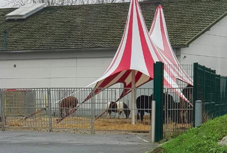 Un cirque s'installe illégalement à Villeneuve-Saint-Georges