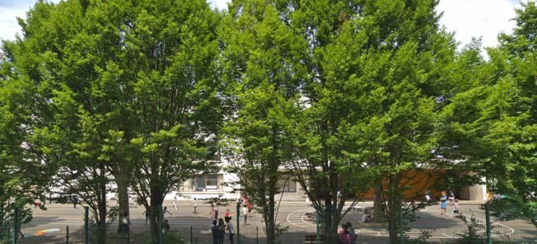 Soupçons d'agression sexuelle dans une maternelle d'Ivry-sur-Seine et un centre de loisirs de Joinville-le-Pont