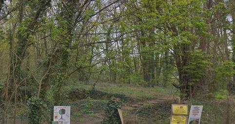 Nouveau recours juridique contre le projet urbain du bois Grignon à Orly