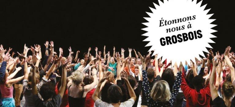 Grosbois en fête : grand bal participatif
