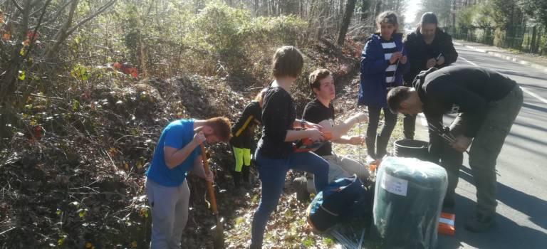Sucy-en-Brie : des bénévoles aident les crapauds à traverser