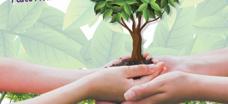 Forêt citoyenne : venez planter un arbre à Chennevières-sur-Marne