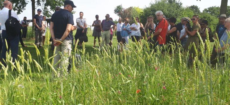Val-de-Marne: tous motivés pour défendre l'agriculture