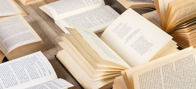 Lectures de salut public :  Jules Michelet, Histoire de la Révolution française
