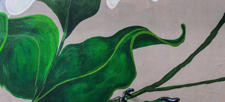 Air, mobilités et urgence climatique : réunion politique Vincennes Respire