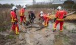 Chennevières-sur-Marne : les pompiers secourent un âne enlisé dans la boue