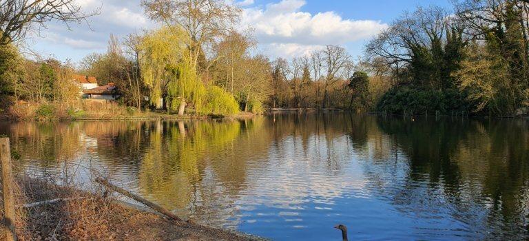 Coronavirus: interdiction partielle des bois de Vincennes et de Boulogne
