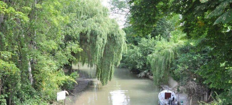 Joinville-le-Pont: les riverains du canal Polangis en guerre contre le béton