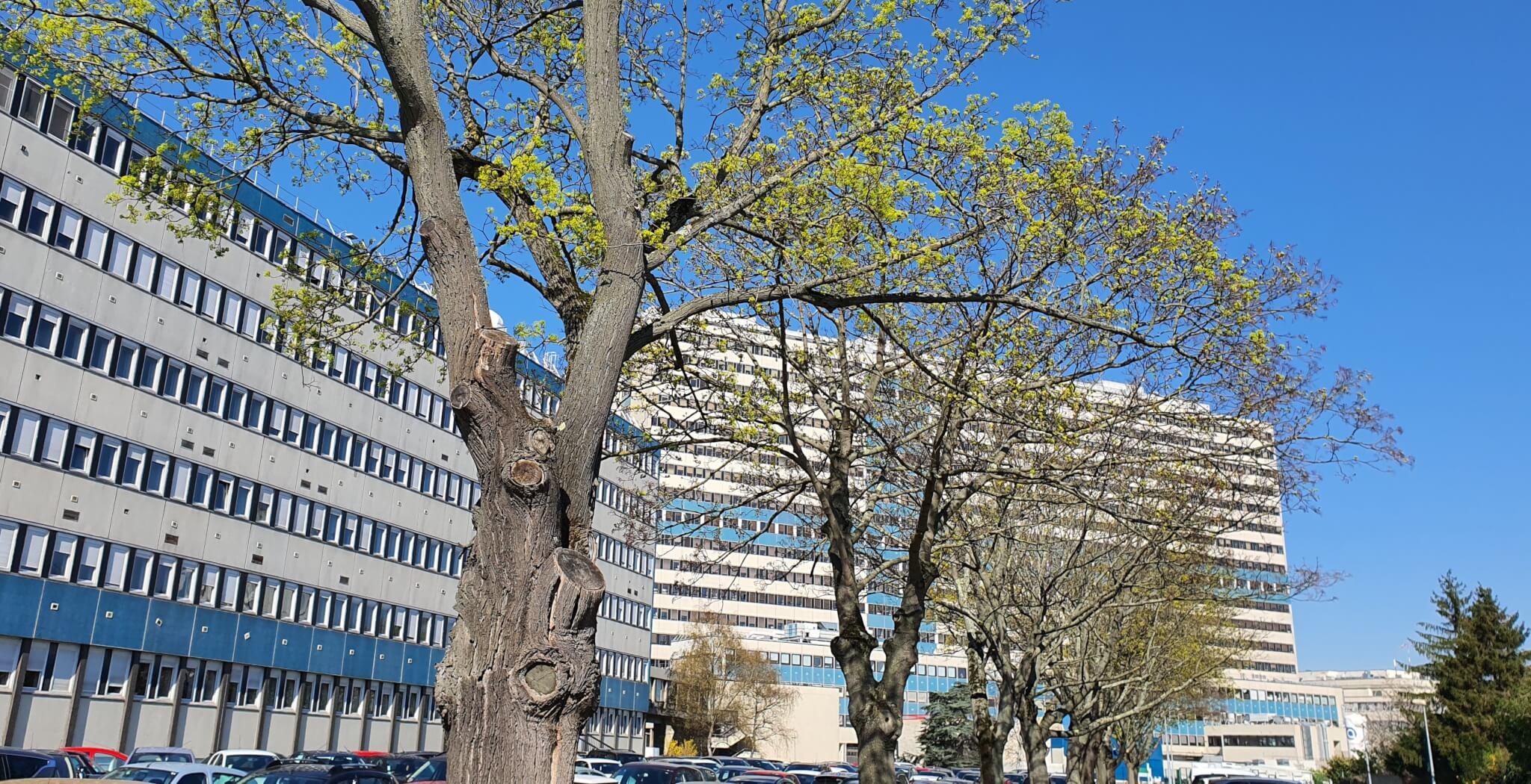 Créteil: manif et commission d'enquête de la coordination de l'hôpital Mondor