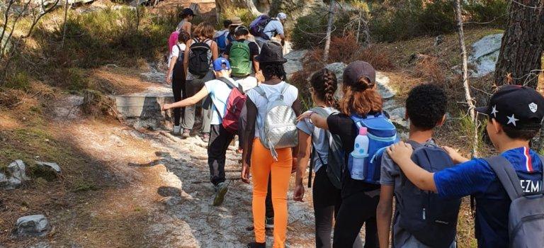 L'USEP94 organise une campagne de 20 Défis Randos Nature en forêt de Fontainebleau
