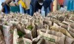 Distribution de paniers solidaires à l'université de Créteil