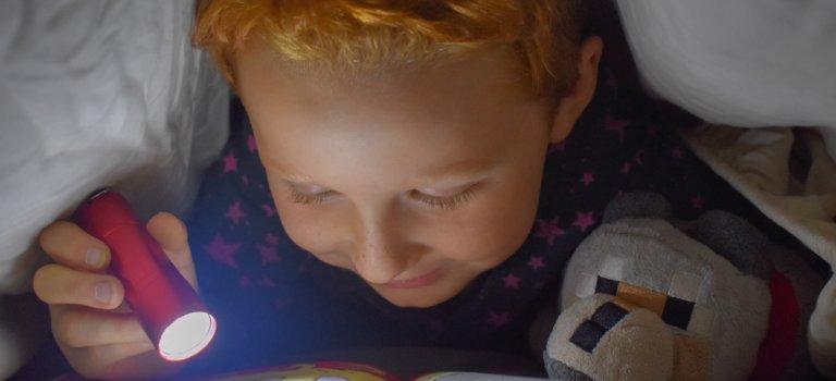 Choisy-le-Roi: les enseignants refusent la méthode de lecture Lego