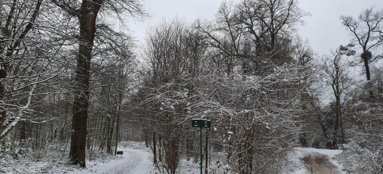 Alerte météo orange crue, grand froid, neige et verglas en Ile-de-France