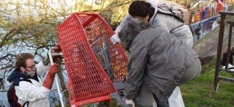 Villeneuve-Saint-Georges: 10 tonnes de déchets ramassés en bord de Seine et Yerres