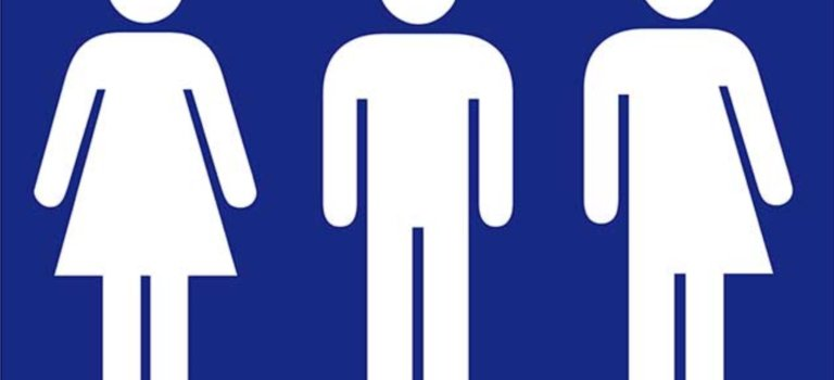 Arcueil: l'institut interculturel Isit inaugure des toilettes non genrées