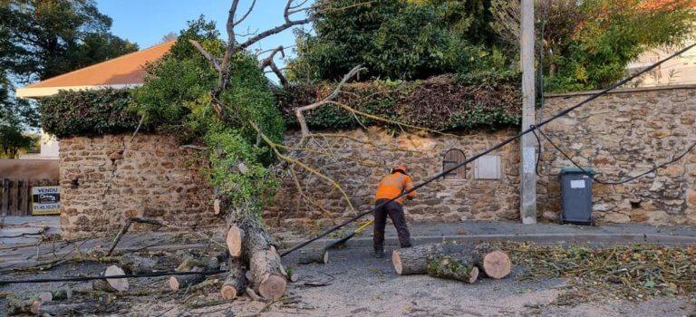 Tempête Aurore : plusieurs centaines de foyers sans électricité en Val-de-Marne